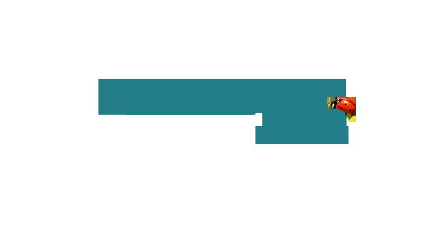 Produits d'entretien 100% d'origine naturelle, sans dangers pour l'homme et la planète. Clean 100 pour les particuliers... Nettoyants naturel et désinfectant minéral efficace et sans danger pour la peau, les surfaces et notre planète. La nature au service du nettoyage...